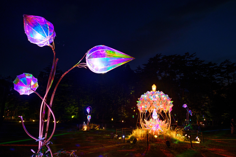 童話村の森ライトアップ